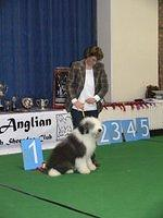 Posing for photos after winning her first class and qualifying for Crufts 2009
